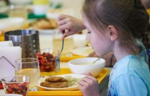 Новости о новых Требованиях в организации школьного питания